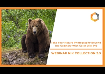 Take Your Nature Photography Beyond The Ordinary With Color Efex Pro